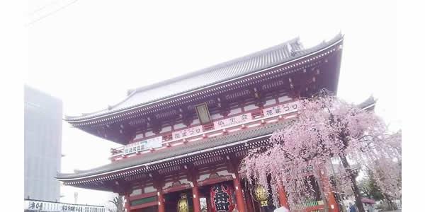 【都内3月末撮影】日本PRプロモーションビデオ出演者募集