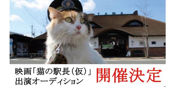 映画「猫の駅長(仮)」出演者・和歌山オーディション開催